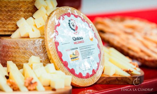 autentico-queso-manchego-1